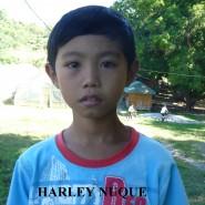 Harley Nuque
